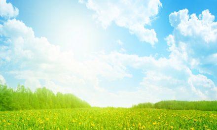 PEYGAMBERİMİZ (SAV) İNSANLARA TEK DOĞRU YOLUN ALLAH'IN YOLU OLDUĞUNU BİLDİRMİŞTİR
