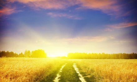 İNKAR EDENLERE KARŞI KESİN VE EMİN BİR ÜSLUP KULLANMIŞ VE ONLARA UYMAYACAĞINI BİLDİRMİŞTİR